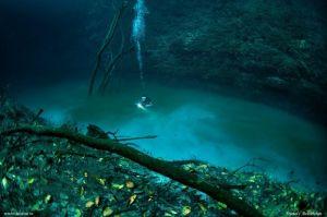 River Under Sea Photo